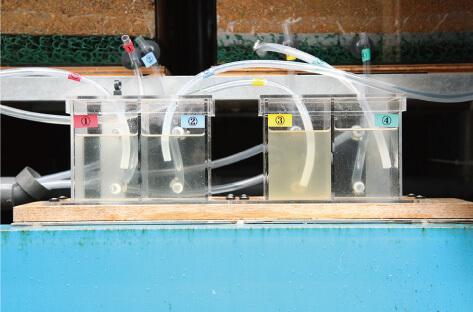 浄化水デモ機